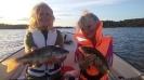 Fångstrapporter 2017